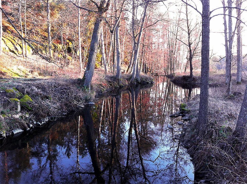 Vattendrag längs med Slingsövägen